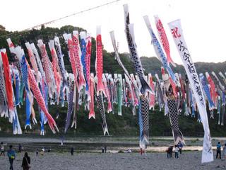 koinobori2010.jpg